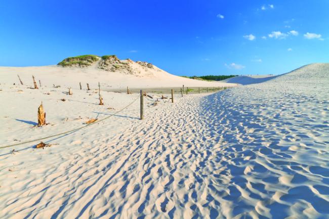 Песчаные пляжи курорта Леба