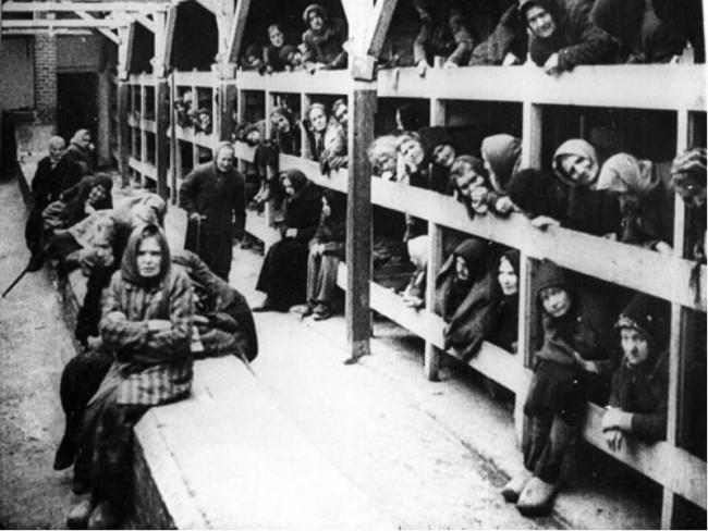 Нары в концлагере Освенцим