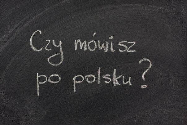 Польша расширяет сертификацию знания польского языка
